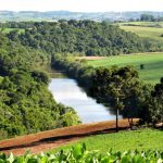 Empresa húngara de painéis solares quer se instalar em Santa Catarina